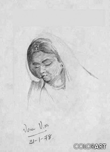 Indian woman pencil sketch by amar v vora