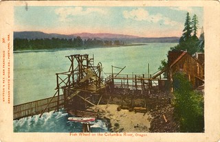 Fish wheel on the Columbia River, Oregon | by OSU Special Collections & Archives : Commons