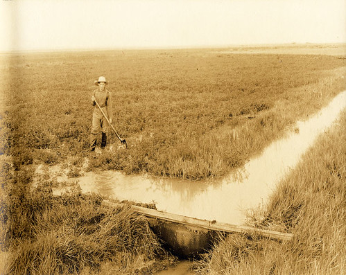 Galt Irrigation Canal System (Southern Alberta Scenes) | by Galt Museum & Archives on The Commons