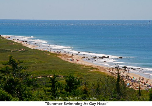 Summer Swimming At Gay Head | by Paul Scharff