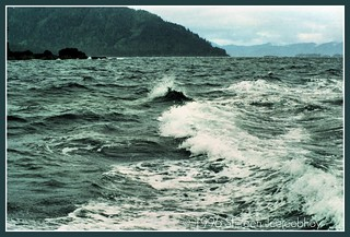 The Scary Seas of Gwaii Haanas | by Points North