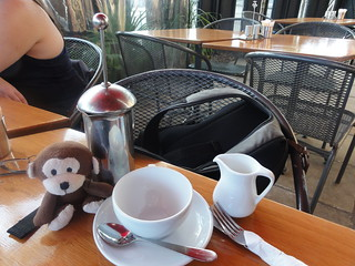 vacation monkey & a cup o' tea... | by steveleenow