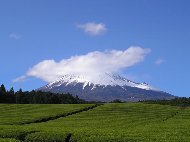 Fuji-san