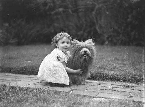 Study of a small girl with a prize Scottish terrier dog, c. 1935 / by Sam Hood | by State Library of New South Wales collection