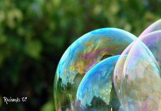 Forever blowing bubbles | by *Amanda Richards