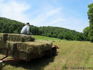Taking a break on the hay trailer | by Farmgirl Susan