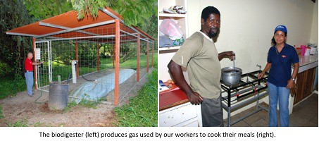 Carbon Footprint Biodigester | by DoleSustainability