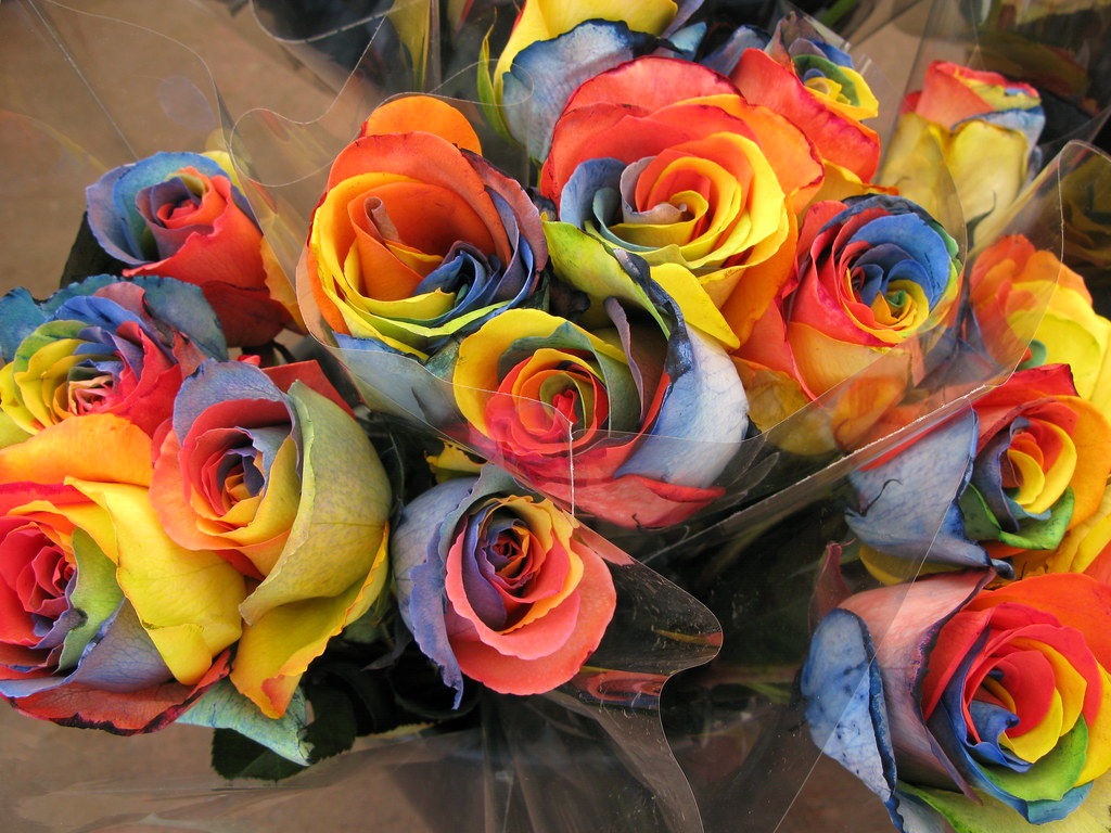 Multi colored flowers | I don\'t know how this is done. These… | Flickr