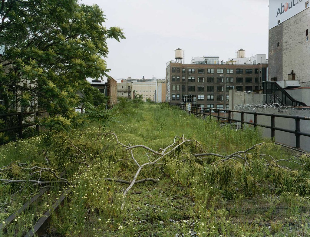 Joel Sternfeld: A Branch that Fell on the High Line, July … | Flickr