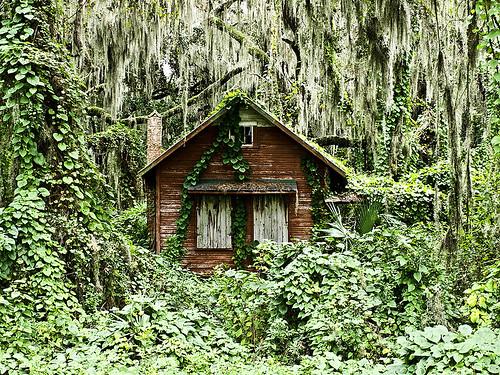 Watercolor Florida Homes
