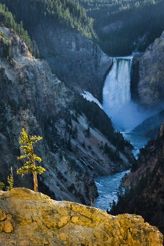 Yellowstone Falls | by girltwin