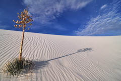 Classic White Sands | by Spencer Foto