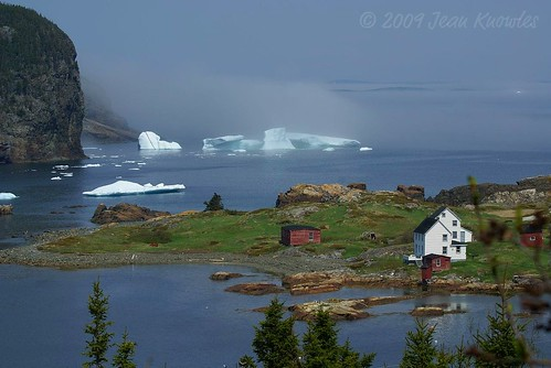 Pure Newfoundland | by Jean Knowles