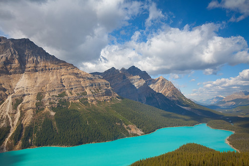 Peyto Lake - 2009 | by Jesse Estes