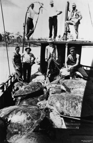 Men turtle fishing at Fitzroy River | by State Library of Queensland, Australia
