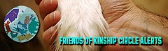 Kinship Circle - Friends of KC Banner | by smiteme