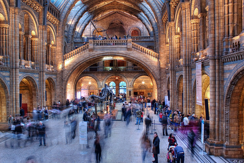 Natural History Museum (entrance hall) | by One_Glass_Eye