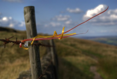 Ribbons on barbed wire | by P.A.B.