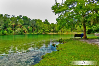Alexander Springs | by Chrissy Avila Photography (cHrIsSy1554)