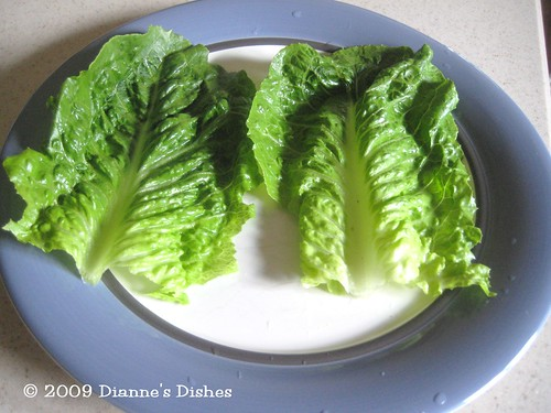 Asian Lettuce Wraps: Lettuce | by Dianne's Dishes