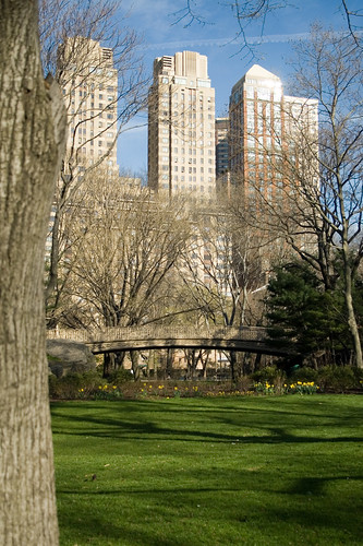 Central Park_1 | by Joseph Pearson Images
