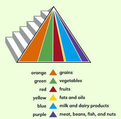 Kids Food Pyramid Food Groups Flickr