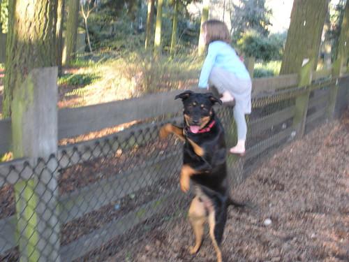 Dog Fence Park Nuck Road