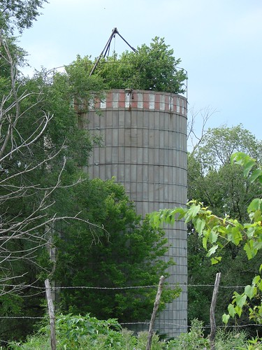 Silo with tree | by Ken Wolf