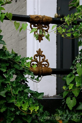Iron & Ivy | by Sprezzatura Images