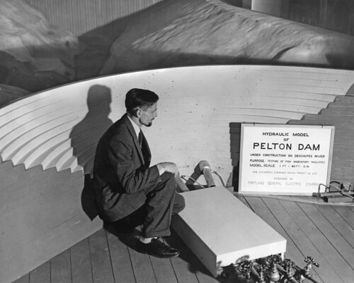 OSC Professor Roy Shoemaker with scale model of Pelton Dam | by OSU Special Collections & Archives : Commons