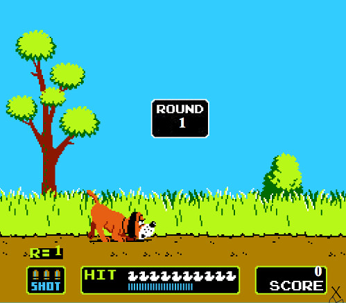 Image result for duck hunt