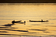 GOLDEN MEKONG | by fabiogis50