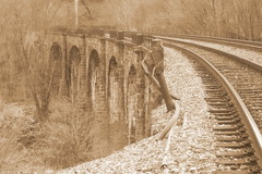 Thomas Viaduct in Sepia | by jeffq