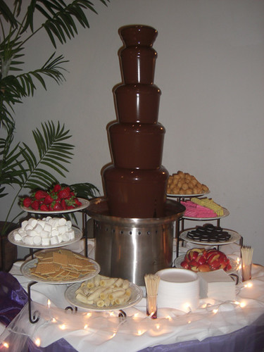 Chocolate Fountain Wedding in Houston | 44"|375|500|?|497168069a449b1a620d2fd1d833b08b|False|UNLIKELY|0.3415573239326477