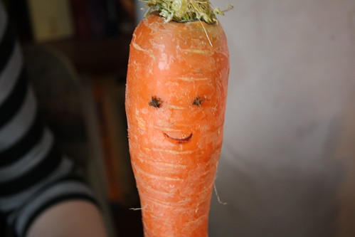 Happy Carrot | by Cyn74
