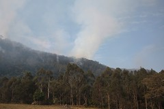 Fire on the ridge above us this afternoon, still burning, but very contained. | by imbala