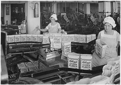 Kellogg Company. Women Inspecting Filled Boxes of Cereal Before Boxes Go to Sealer, 08/22/1934 | by The U.S. National Archives