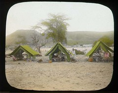 Expedition camp | by The Field Museum Library