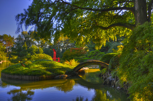 Koi Pond, Brooklyn Botanical Garden | by Chromium Photography
