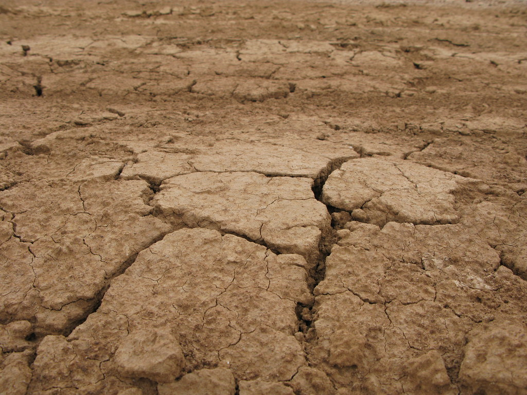 Image gallery savanna soil for Soil 4 teachers