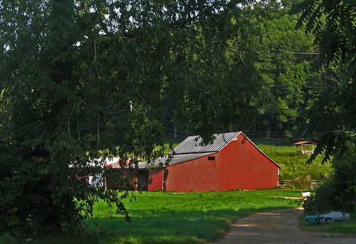 The Barn Wyckoff: As Viewed In The Scenic Chenoweth Fork