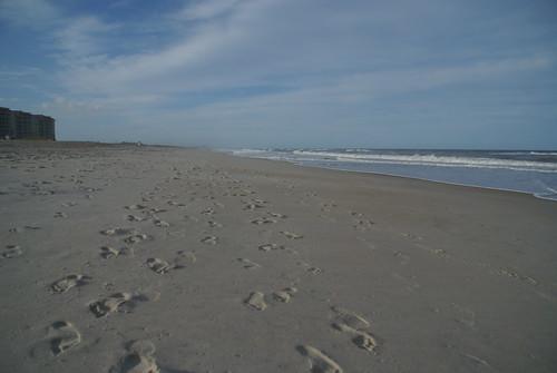 Beach, Amelia Island