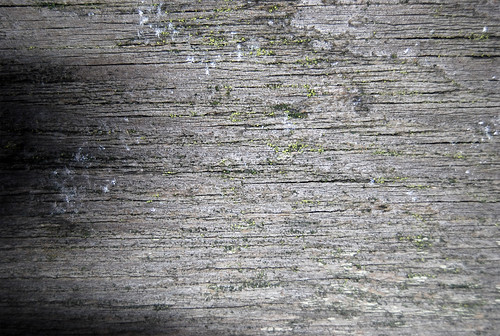 Wood Texture 04 | by SixRevisions