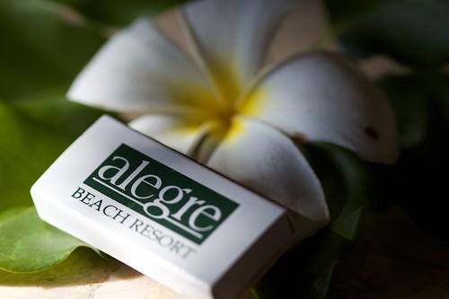 Alegre Beach Resort Spa Cebu