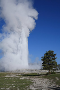 Old Faithful early morning eruption | by Hammerchewer