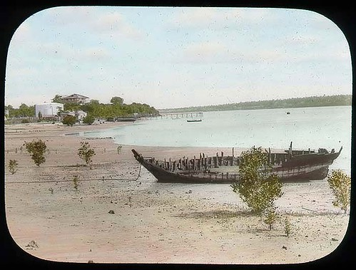 View on river shore | by The Field Museum Library