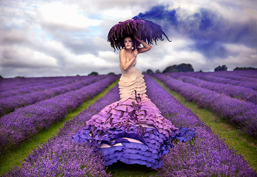 Wonderland : The Lavender Princess | by Kirsty Mitchell