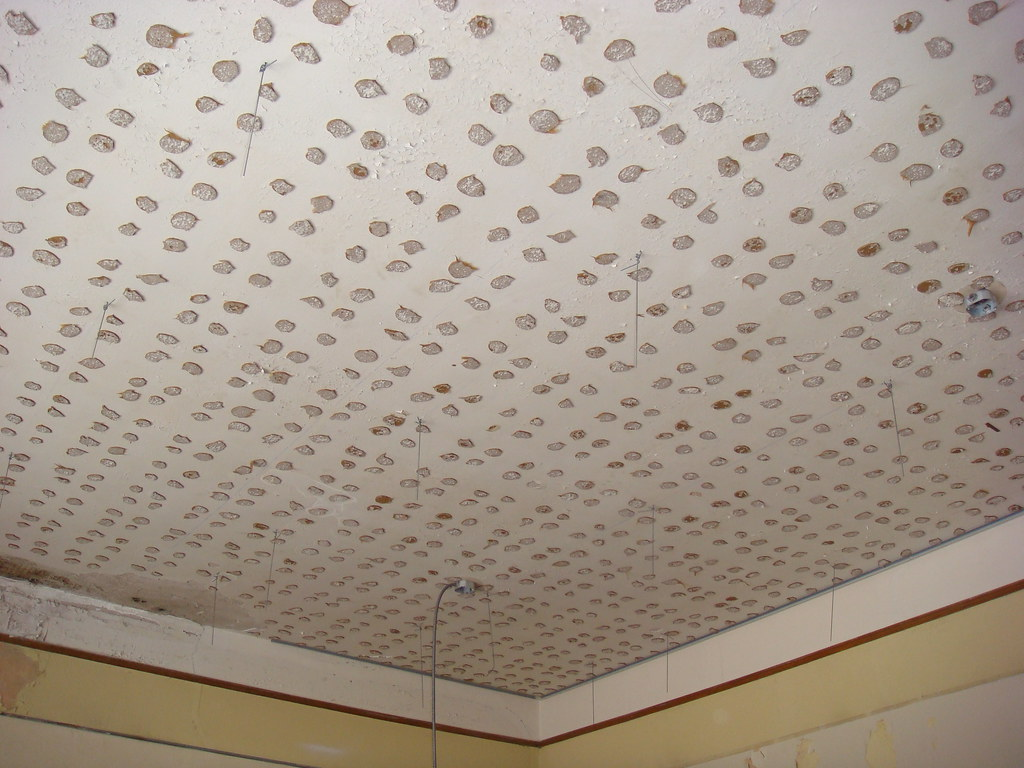 Ceiling Tile Asbestos Adhesive With A Suspended 2x4 Ceil Flickr