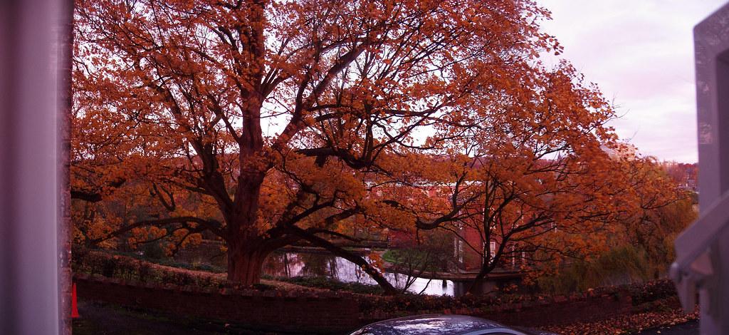 Snuff Mill in autumn