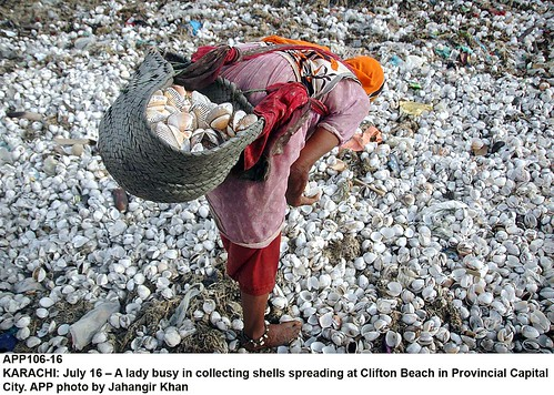 shells  (also see this picture on BBC Urdu.com) | by Jahangir @